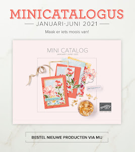 Stampin' Up! mini Lente/Zomer 2021