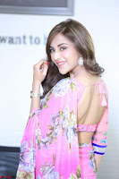 Actress Angela Krislinzki in Pink Saree Blouse Exclusive Pics March 2017 ~  094.JPG