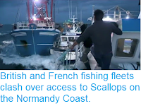 https://sciencythoughts.blogspot.com/2018/09/british-and-french-fishing-fleets-clash.html