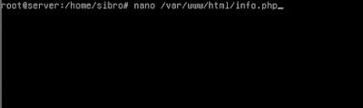 Lalu coba kita tes yang phpnya sudah terinstall apa belum dengan cara membuat file php kemudian kita isikan script phpinfo