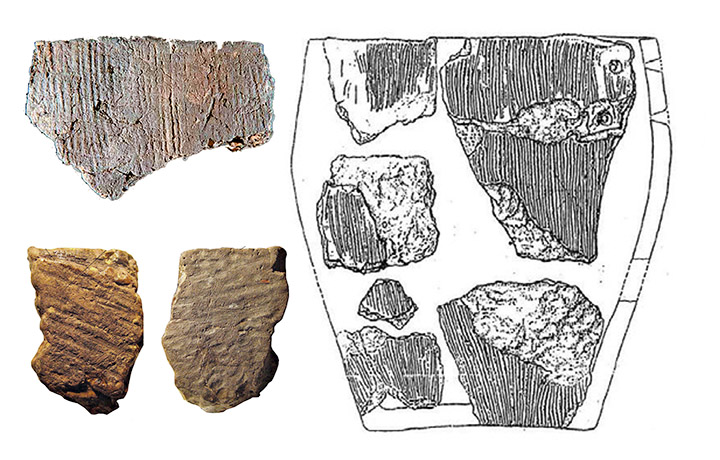 Reconstrucción de una vasija de la Cultura de Osipovka Culture vessel y fragmentos de cerámica encontrados en Gasya y Khummi. Foto: Vitaly Medvedev, Oksana Yanshina