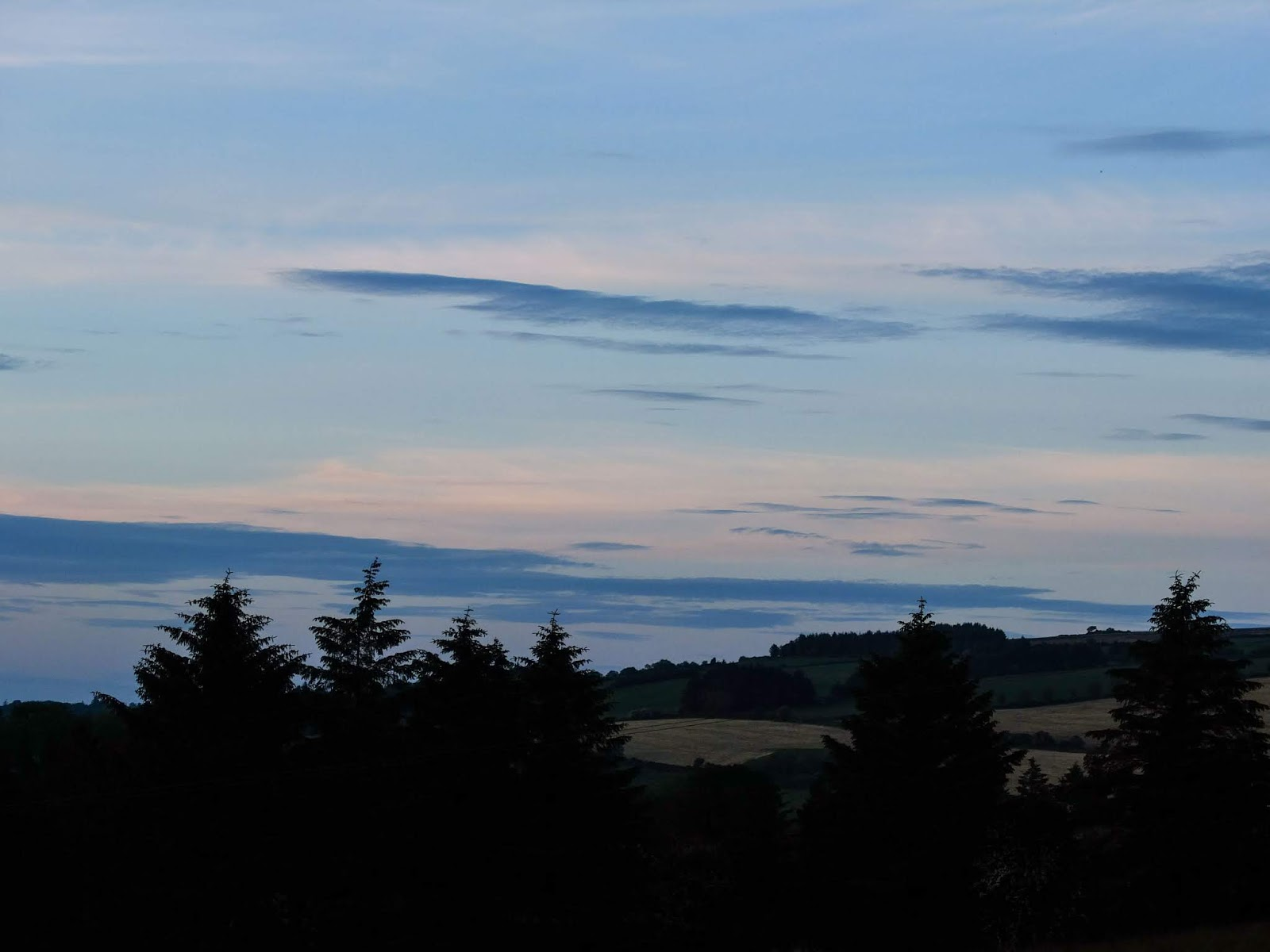 Fields and forestry in the Boggeragh Mountains at dusk.