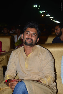 Nenu Local Audio Launch Stills  0048.JPG