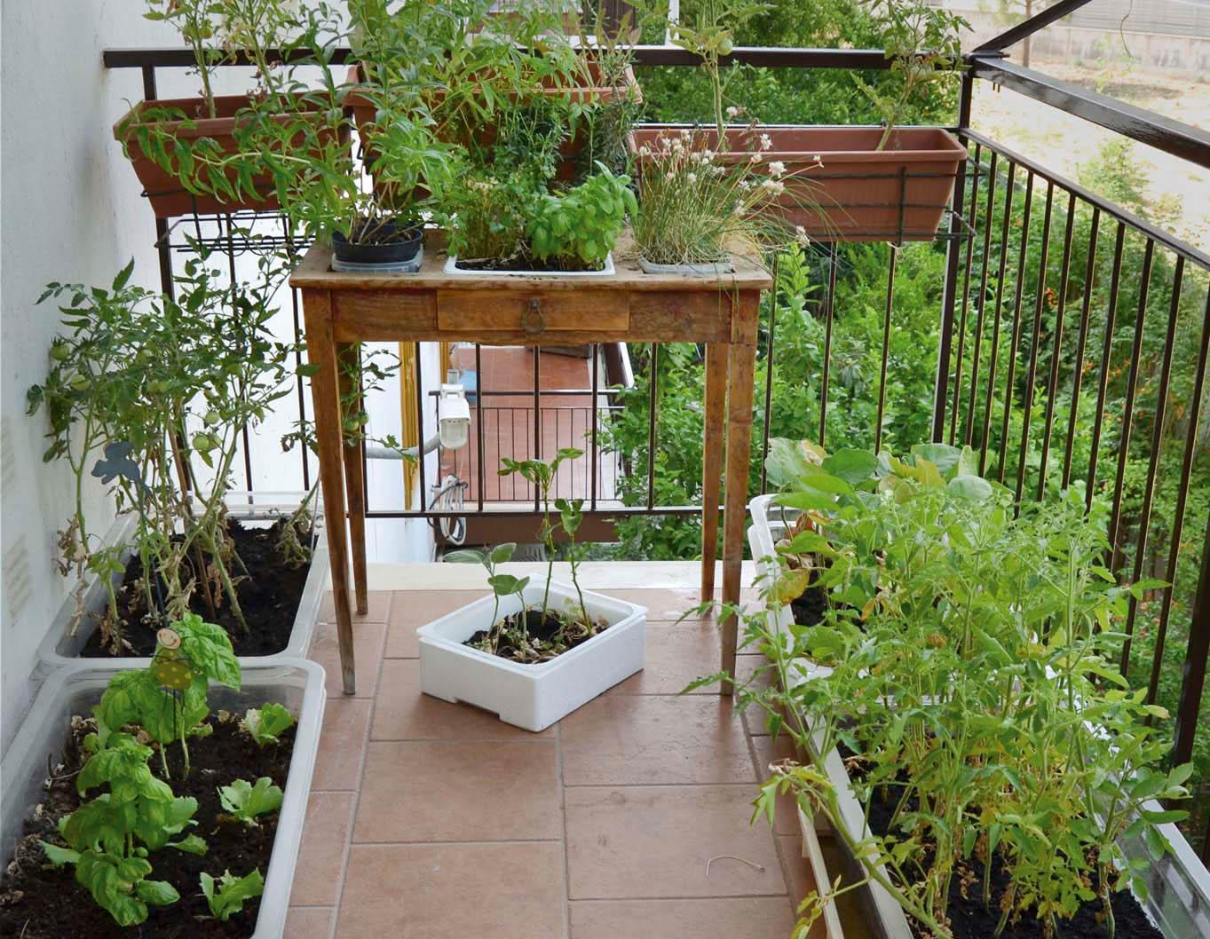Fatto in casa: Come realizzare un orto sul balcone o il terrazzo