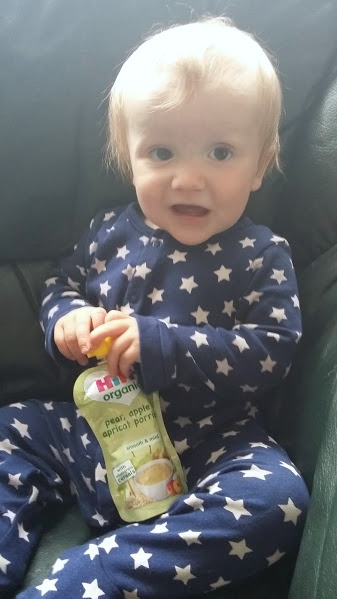 HiPP Organic Fruit Porridge Pouches - Blog Review
