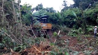 aksi Trial Dozer Caterpillar D5R Land Clearing di Proyek Cetak Sawah Ampah Kalimantan Tengah