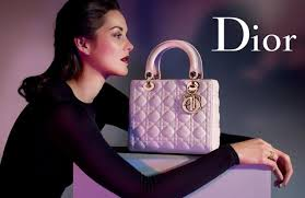 This Is A 101 Treatment Of As Seen On Ebay Real Dior Handbags