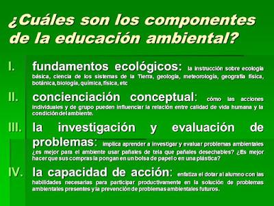 componentes de la educación ambiental