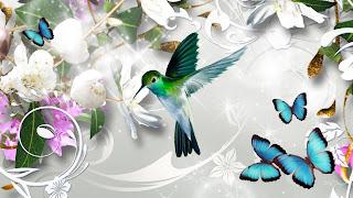 Wallpapers de Mariposas