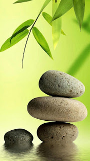 Green Leaf with Stones Wallpaper