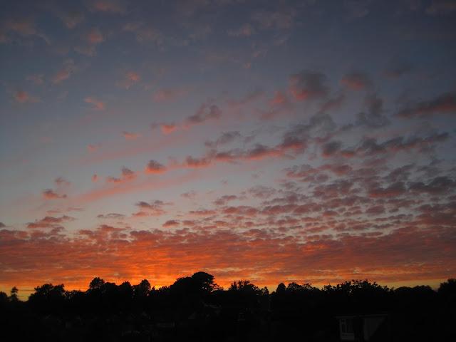 Tina's Allsorts, sunsets