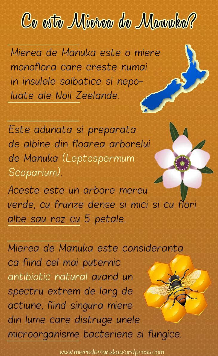 Mierea de Manuka: proprietati si beneficii ale celui mai puternic antibiotic natural