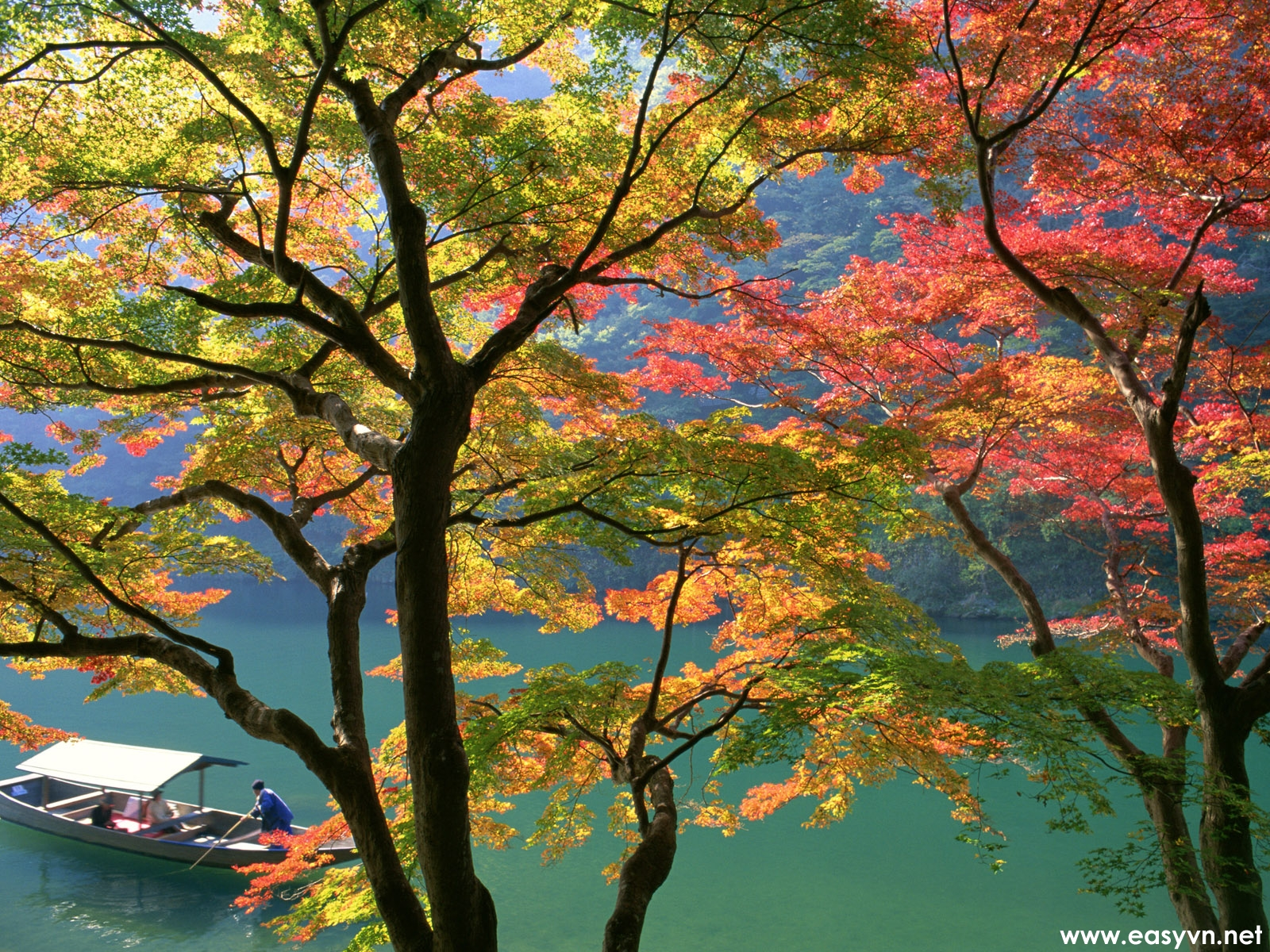 Free download wallpapers for desktop most beautiful - Nature japan wallpaper ...