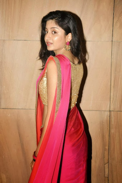 Poonam Kaur in Beautiful Saree