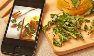 Budget Friendly Meals with Apps