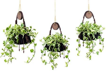 Hanging Pots 5