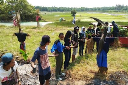 Festival Tandur Sawah Di Karimunjawa