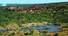 ZIM HOTELS NAMED AMONG THE BEST