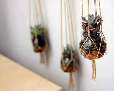 Pot tanaman unik
