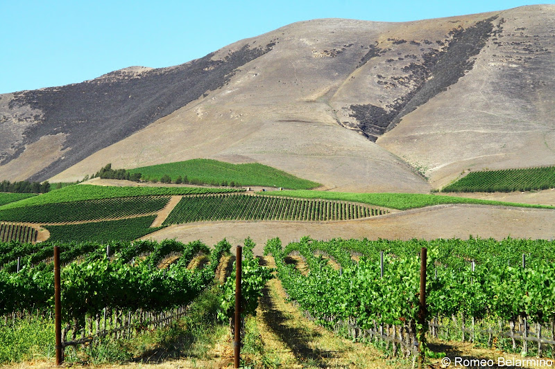 Santa Maria Valley Wine Country Central California Weekend Getaway