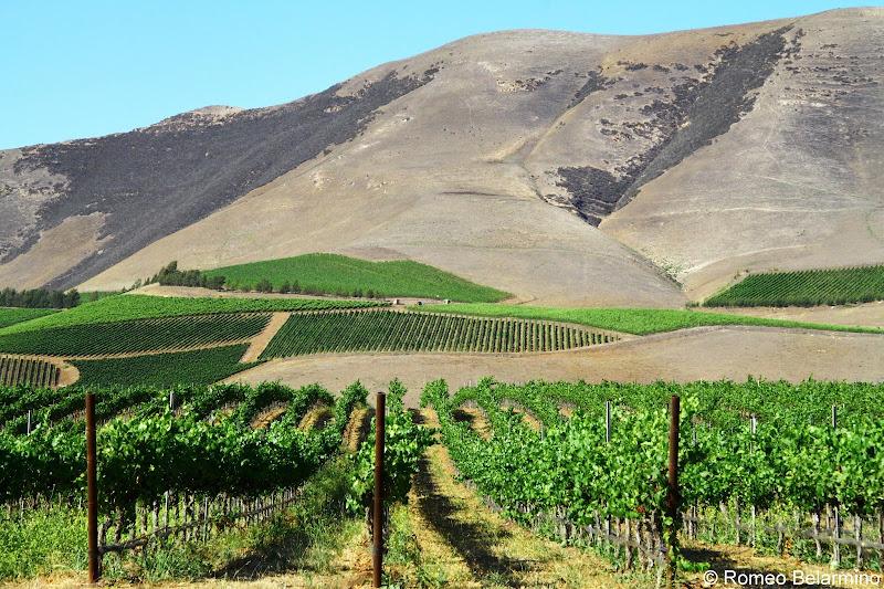 Santa Maria Valley Wine Country Central California Weekend Getaway