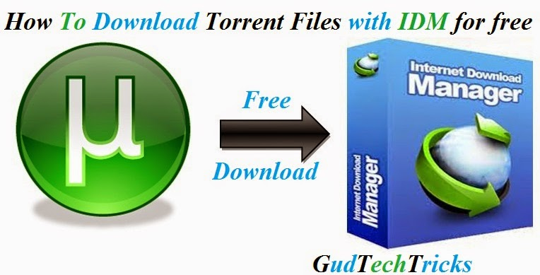 download-torrent-using-idm