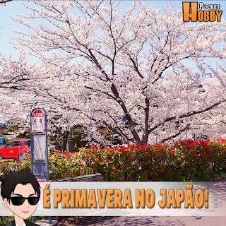 Pocket Hobby - www.pockethobby.com - É Primavera no Japão!