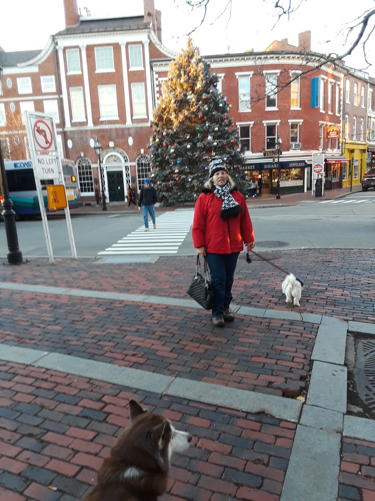 Dogs Luv Us And We Luv Them Dog Friendly New England Town