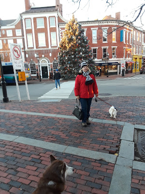 Dog friendly New England town, Portsmouth New Hampshire.  Great getaway with the dogs!  Pet travel, Pet friendly, Travel with dogs
