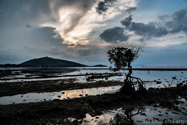 Pemuteran - Bali