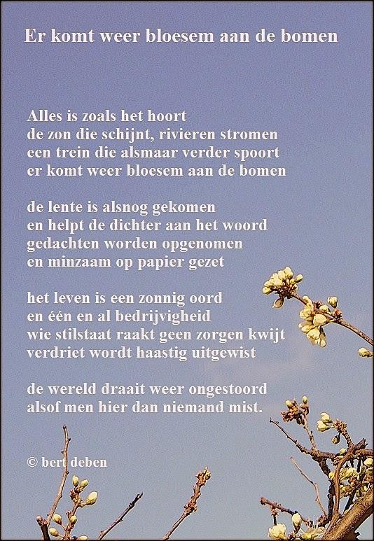 Populair leven in poëzie: Er komt weer bloesem aan de bomen PL73
