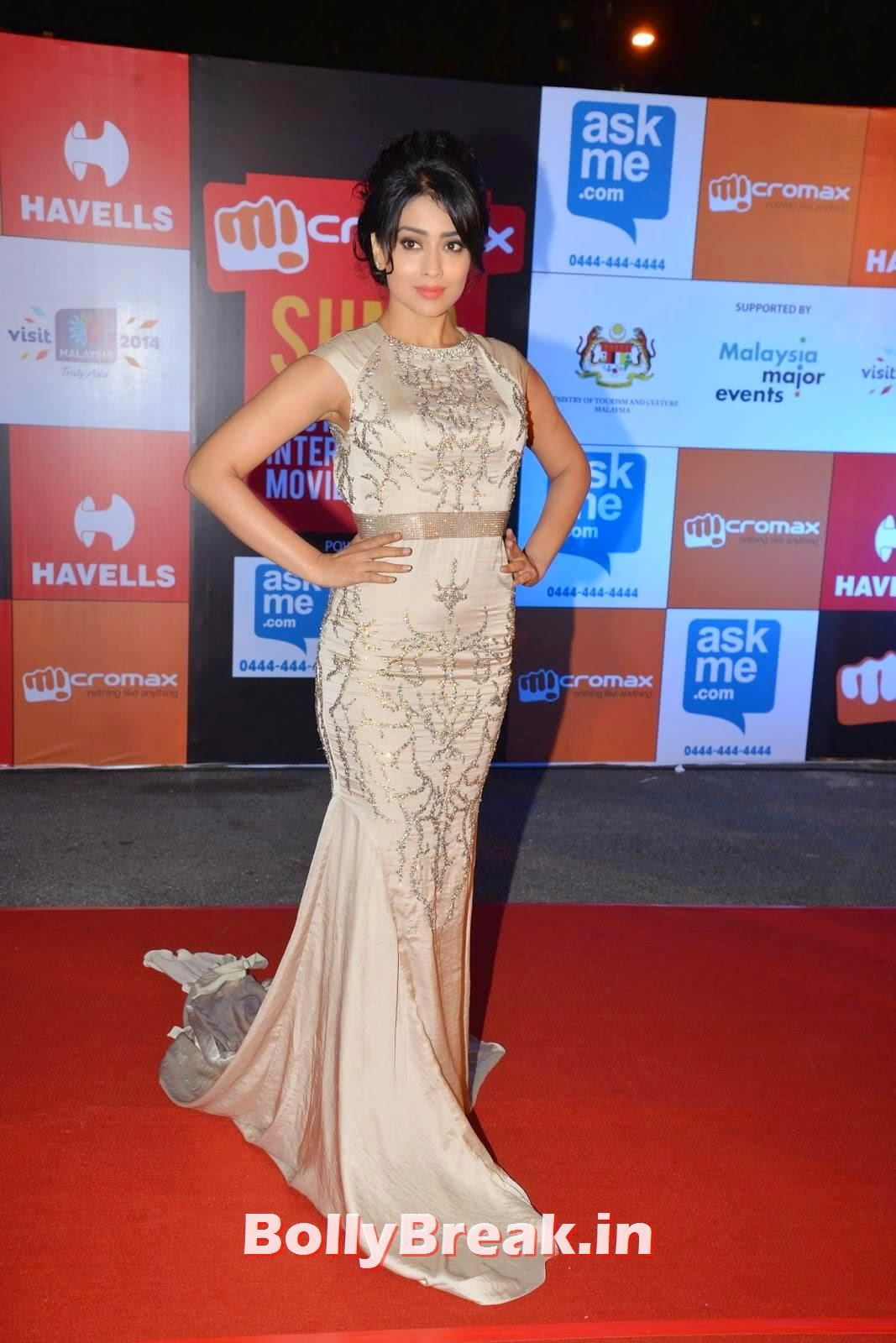 , Shriya Saran Hot Images from SIIMA Awards 2014