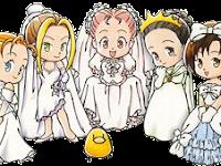 Daftar Gadis Yang Dapat Di Nikahi Harvest Moon Back To Nature