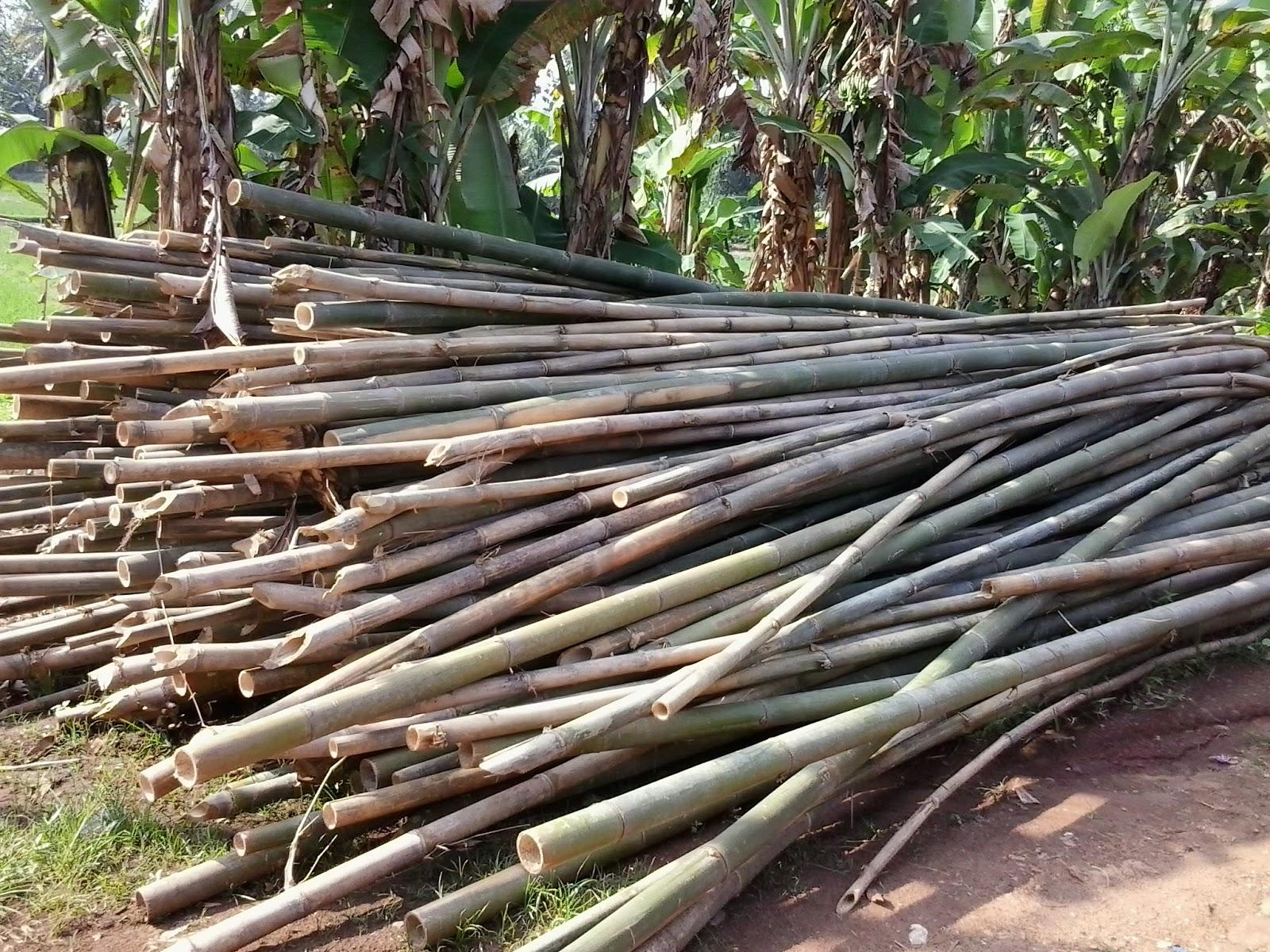 Kerajinan Bambu Paling Banyak Digunakan Untuk Keperluan