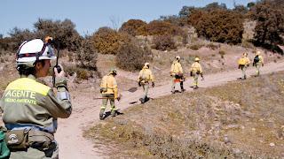 Agentes de Medio Ambiente participan en simulacro de incendio forestal en Huelva