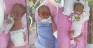 Tiga bayi kembar