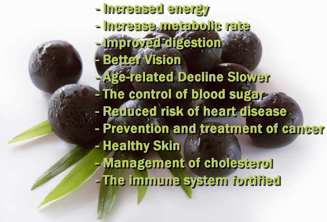 Acai Berry Diet, acai berry ,acai ,diet plans ,detox diet ,weight loss tips ,weight loss diet ,acai berry weight loss ,diets that work ,acai berry juice ,acai berry cleanse ,best diet ,acai berry pills ,acai berry benefits ,acai berry diet pills ,acai juice ,acai berry tablets ,acai berry supplement ,acai berry powder ,diet tips ,acai berry capsules ,acai benefits ,acai diet ,acai berry reviews ,acai weight loss ,pure acai berry ,acai berry extract ,acai supplement ,acai tablets ,acai berry side effects ,acai pills
