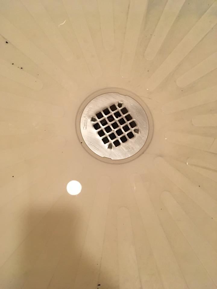 One Brown Mom: Help, my shower drain is clogged! - No ...
