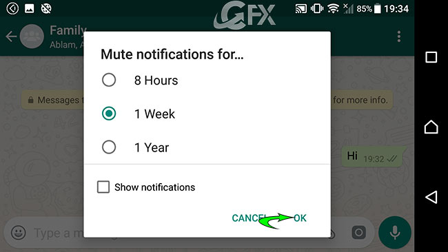whatsapp Mute notifications - www.ceofix.net