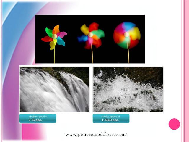 دورة تكوينية في التصوير   أساسيات التصوير الفوتوغرافي