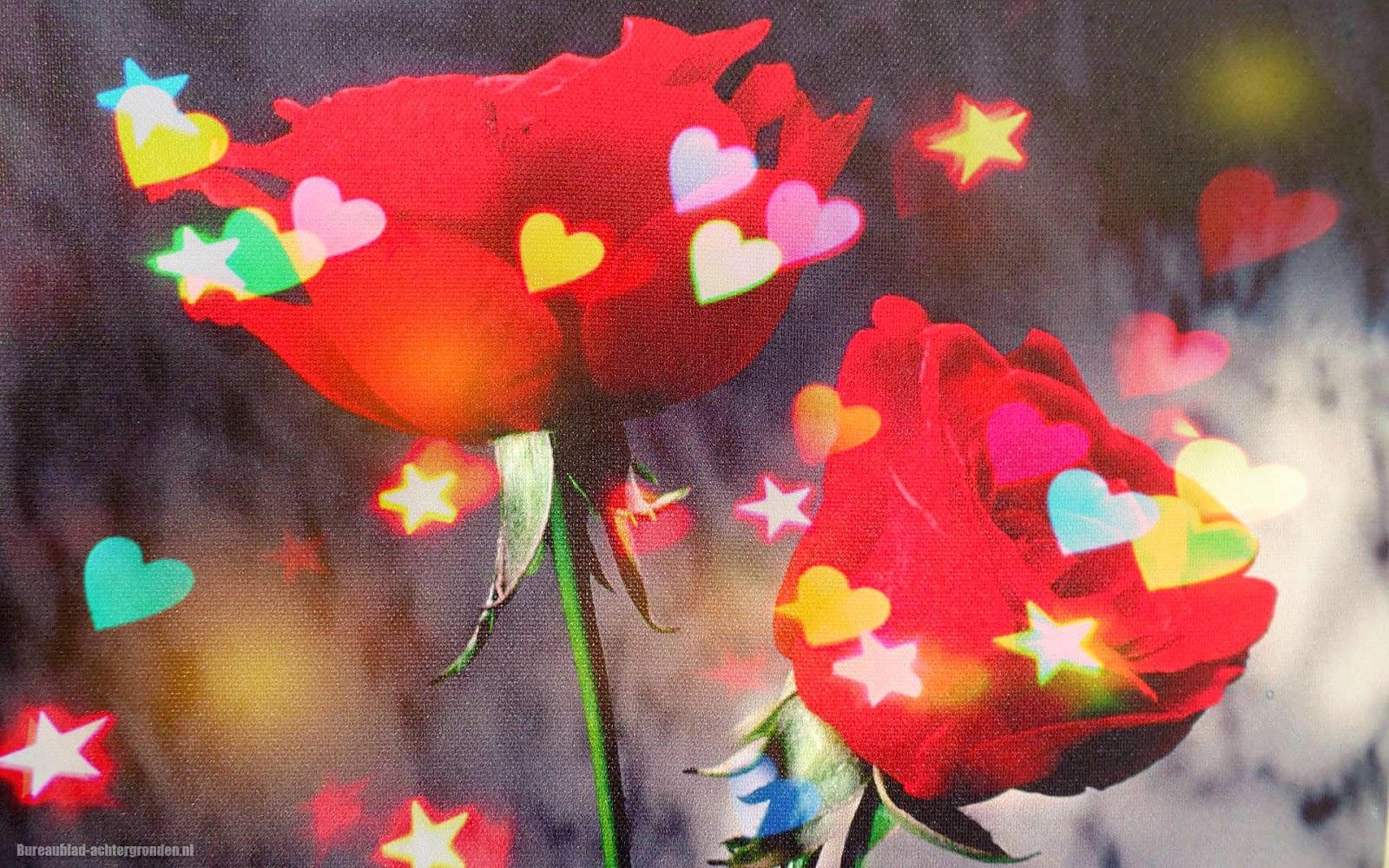 Foto van een schilderij met rode rozen