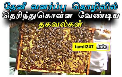 தேனீ வளர்ப்பு தொழில் குறித்த முழு விவரங்களை தெரிந்துகொள்ள. Theni valarppu thozhil alosanai, Agri Business ideas tips in tamil, Honey bee keeping business tamilnadu,