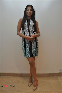 Catherine Tresa Pos at Iddarammayilatho Platinum Disc Function  0002.jpg