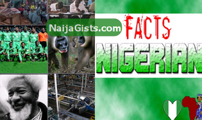 facts about nigerians and culture
