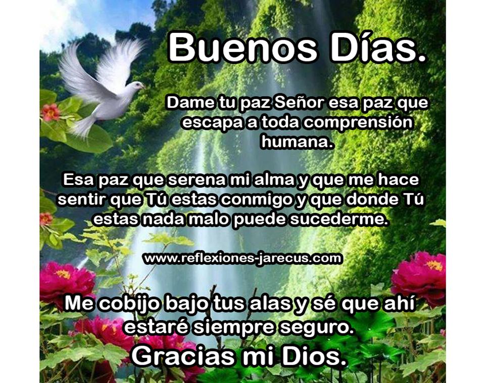 Buenos días, Frases de buenos días, Mensajes de buenos días, Oración de buenos días, Postales de buenos días,