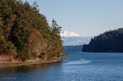 Mount Baker from the Goose Rock Perimeter Trail