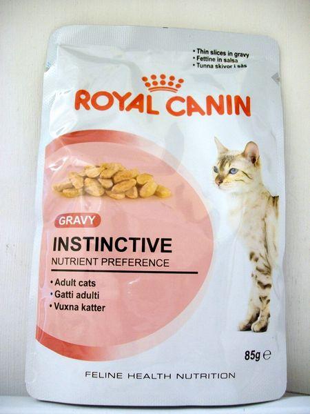 royal canin gravy kitten instinctive