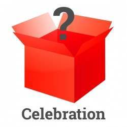 Celebration mystery bundle was £26 now £6.99!