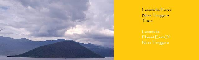 http://ketutrudi.blogspot.co.id/2018/02/berlibur-ke-larantuka-traveling-to.html