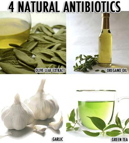The Top Most Effective Natural Antibiotics